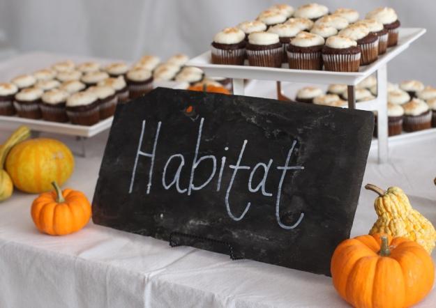 Habitat Pumpkin Spice Cupcakes