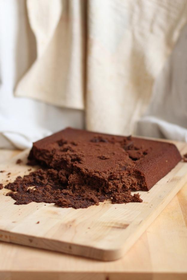 Chocolate Cake Fail
